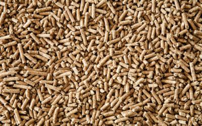 Le poêle à granulés: un système de chauffage écolo