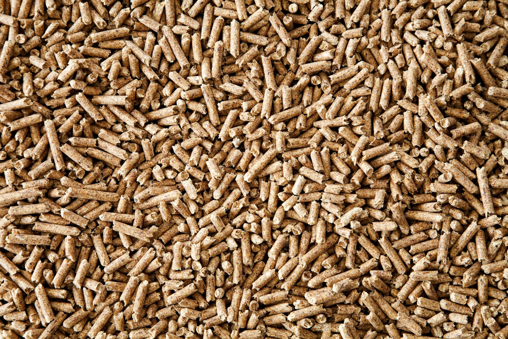 Le poêle à granule ou pellets