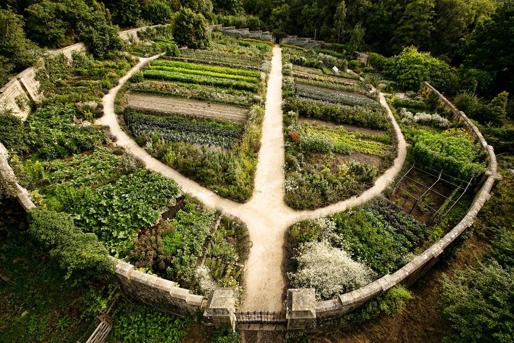 La permaculture pour la planète