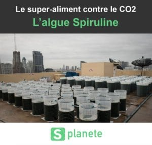 l'algue spiruline contre le co2
