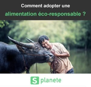 adopter une alimentation eco-responsable