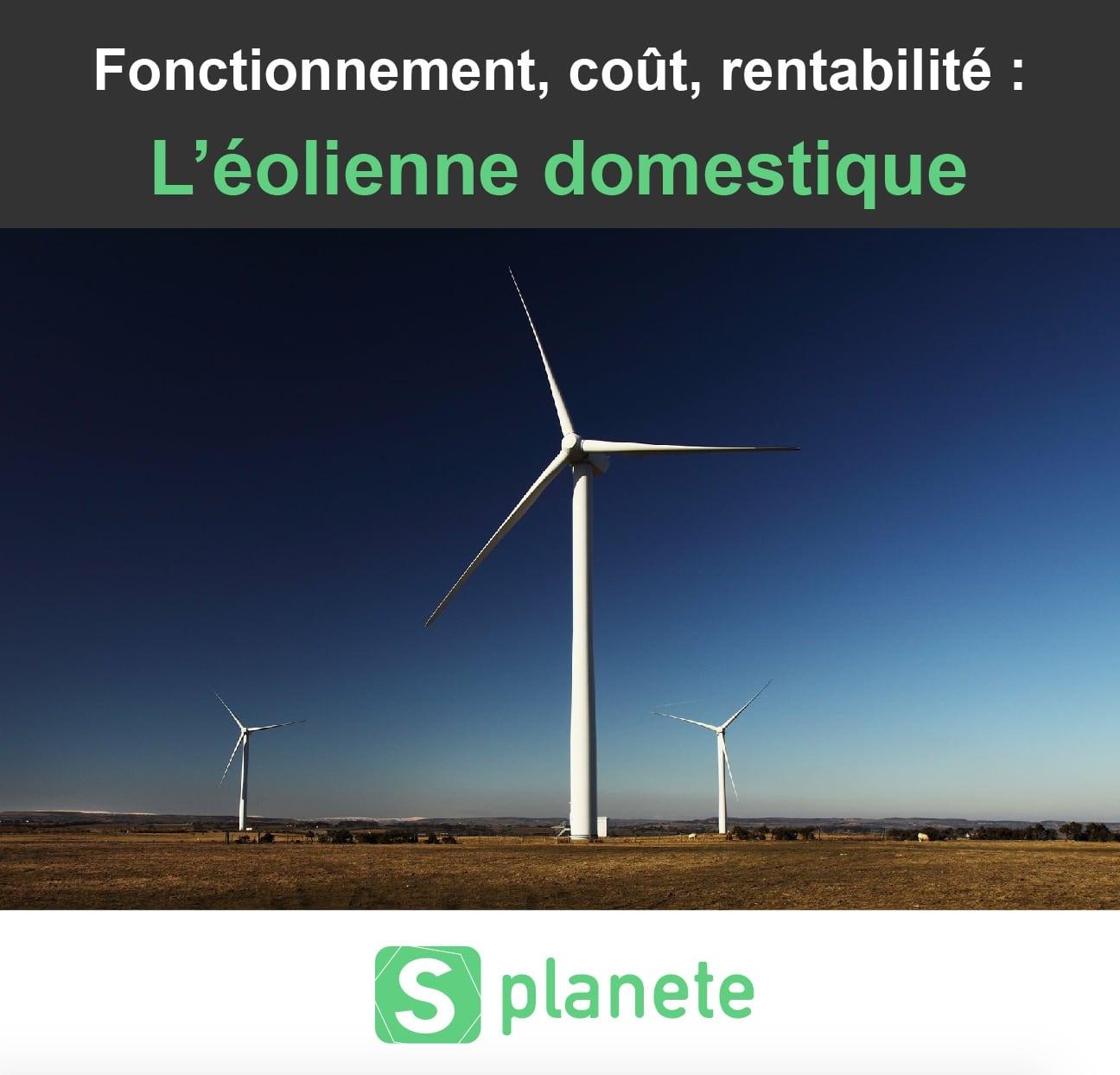 l'éolienne domestique