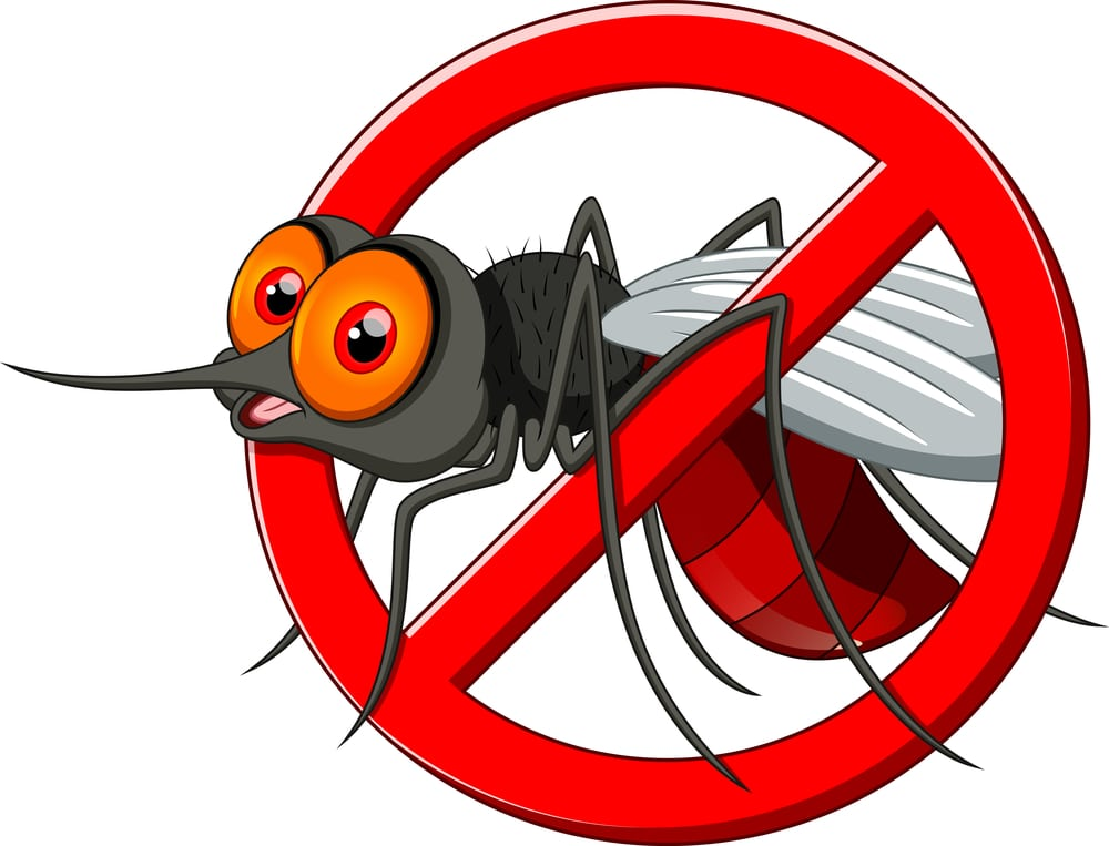 La précention contre les moustiques