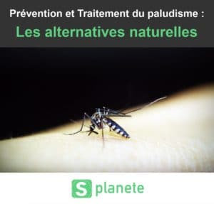 prévention et traitement naturels du paludisme