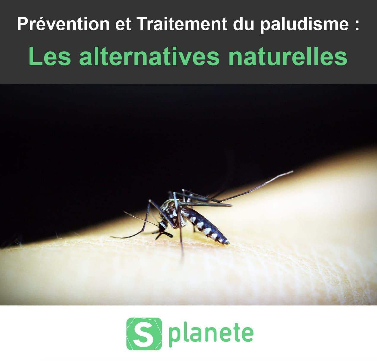 Remede De Grand Mere Contre Les Moucherons Dans La Maison top 10 des produits anti-moustiques naturels et écologiques
