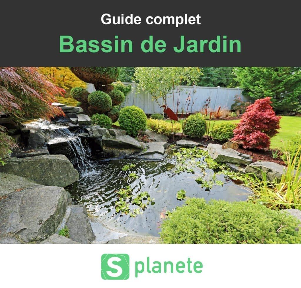 Construire Son Bassin De Jardin bassin de jardin : construire, aménager et entretenir