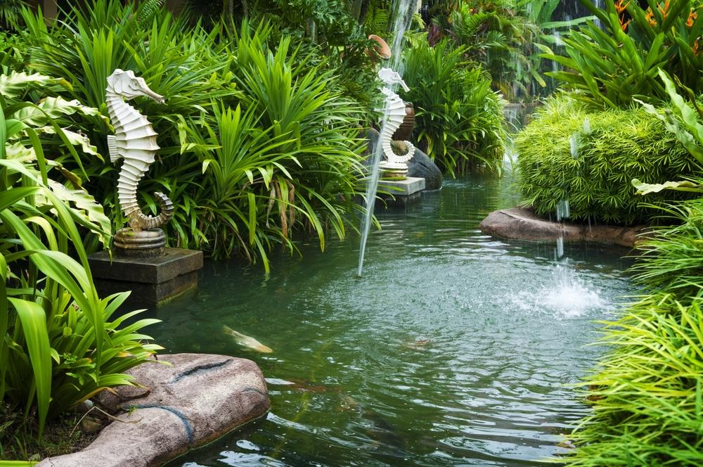 quel type de bassin de jardin
