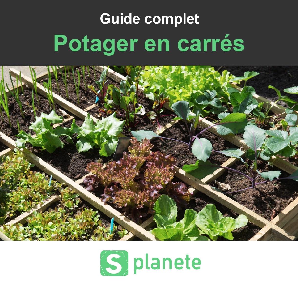 Fabriquer Potager Carré En Bois carré potager : guide 2020 (choisir, aménager et entretenir)